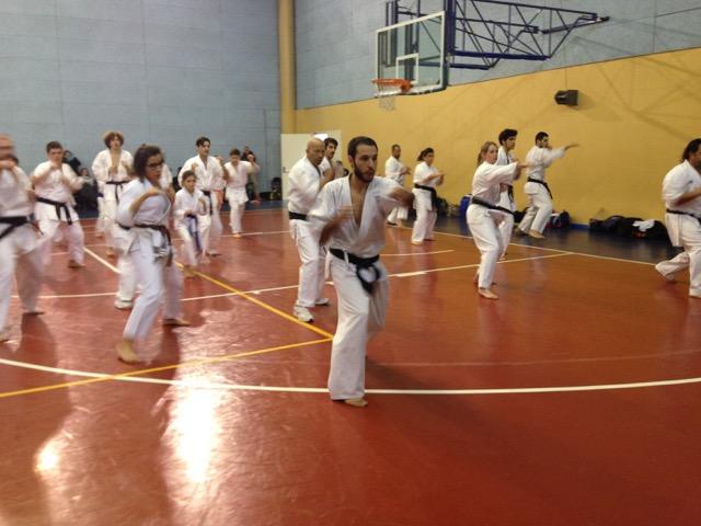 makotokai-karate-1
