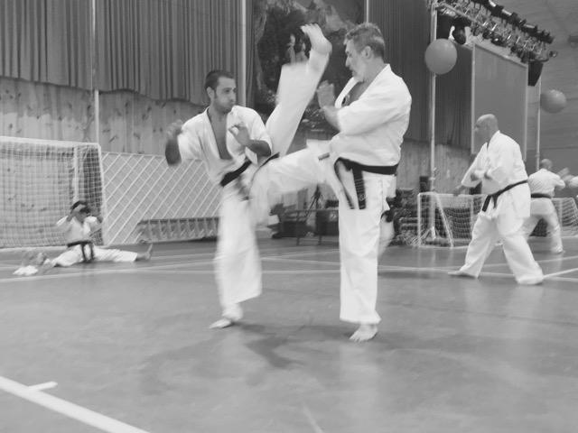 makotokai-karate